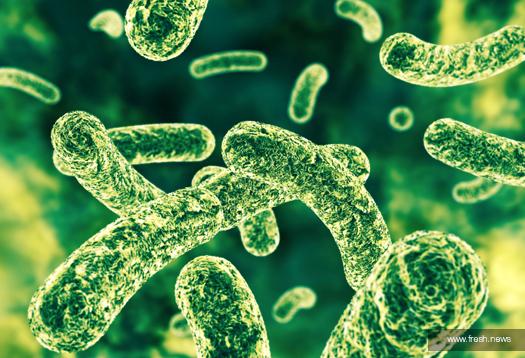 Probiotics & Digestive Health
