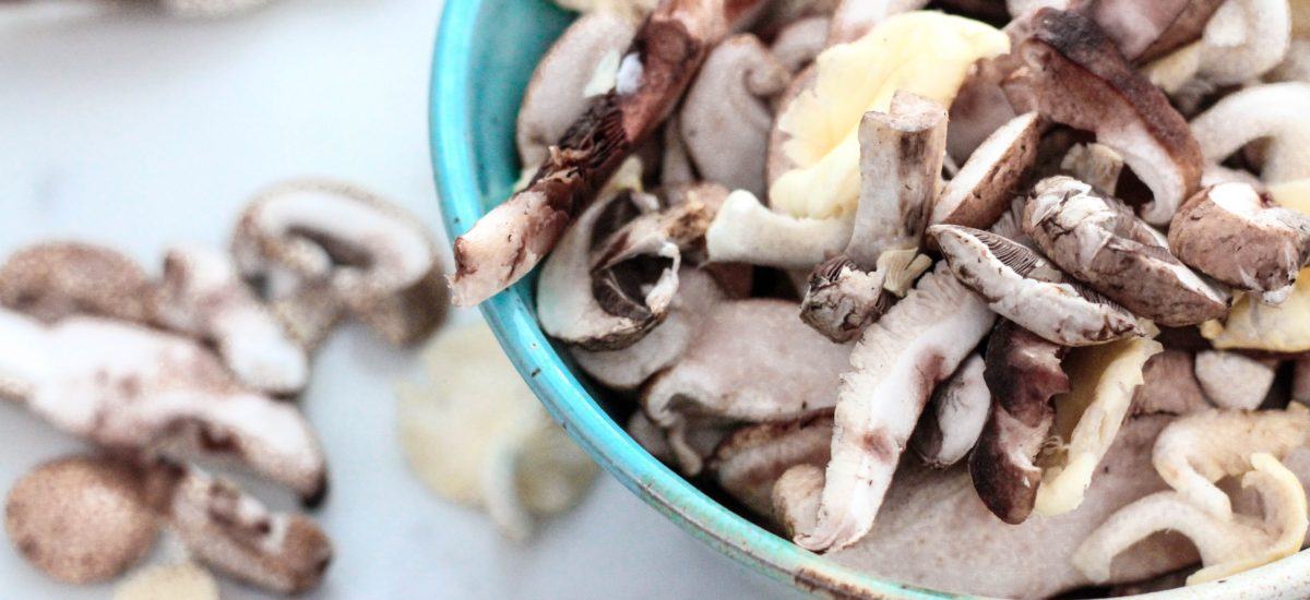 Mushrooms: The Superfood You Have to Try