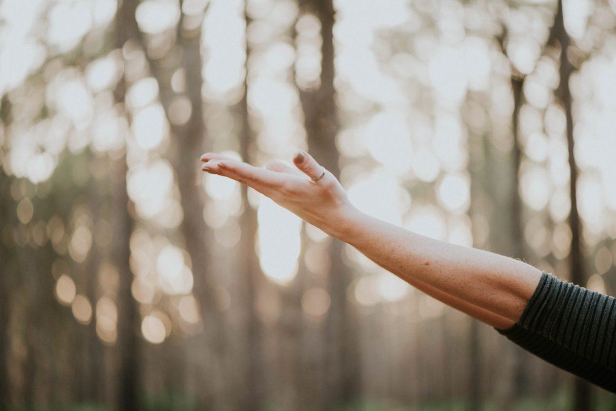 New Study: Collagen Builds Bone Health in Women